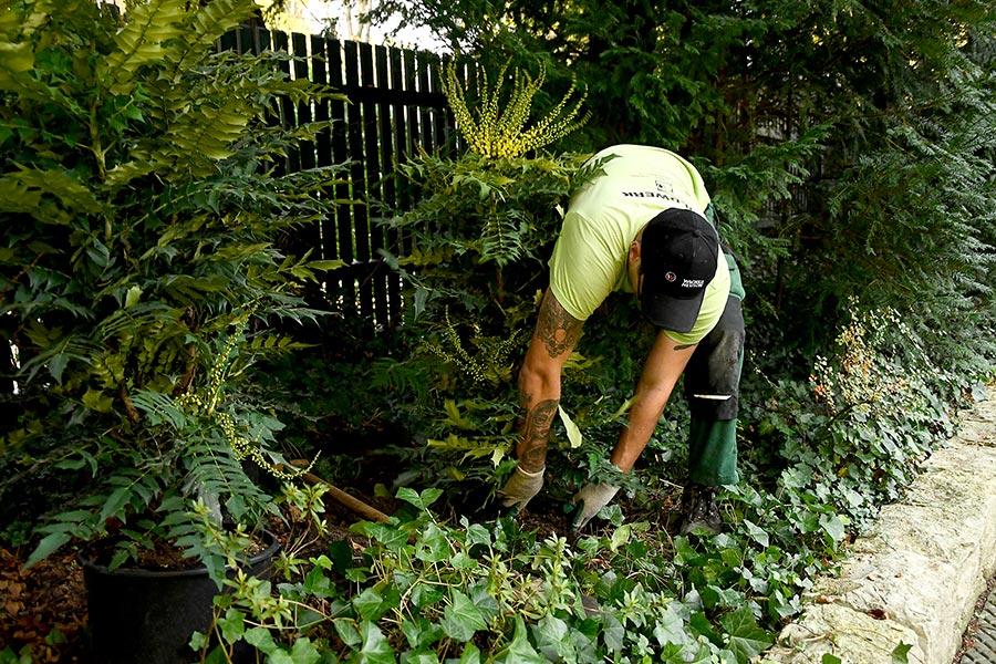 Gartenarbeiten mit Goldwerk
